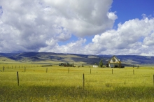 near Yellow stone NP, WY